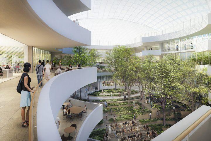 מרכז אלברט איינשטיין, ברזיל 2021, הדמיה