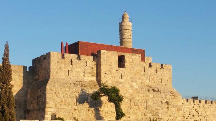 טופוגרפיות חלופיות, מוזיאון מגדל דוד