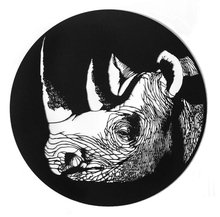 Western Black Rhino, 2017