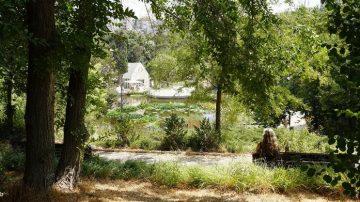 הגן הבוטני ירושלים