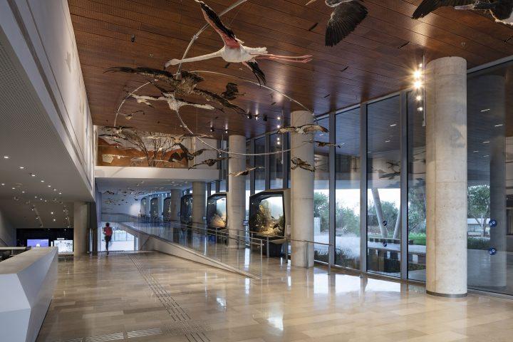 מוזיאון הטבע