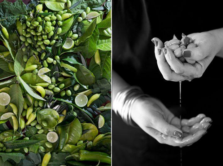 זית - ירוק, שפית נוף עתאמנה אסמעיל