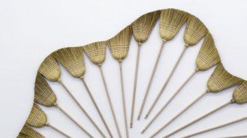 עבודת נמלים שהפכה לפשטות גאונית
