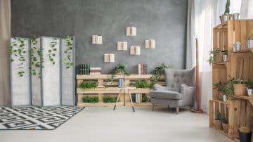 אף פעם לא חלמתם לצבוע את הסלון בירוק? כדאי שתתחילו!