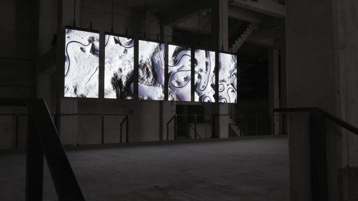 אמנות דיגיטלית, מיצב אורקולי