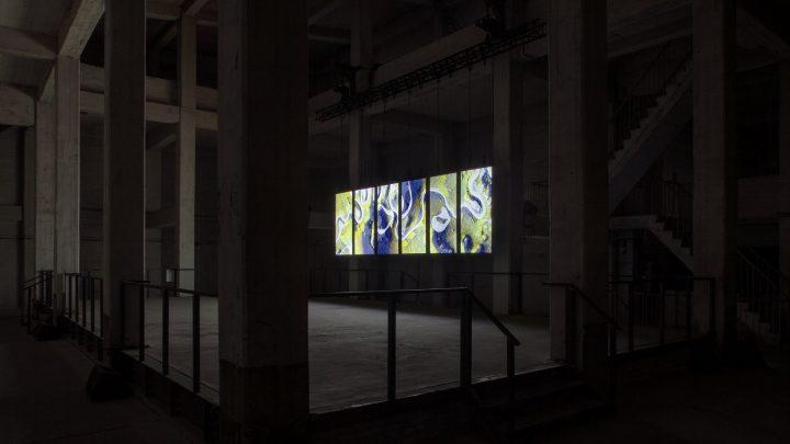 תערוכה בברלין, סטודיו בברלין