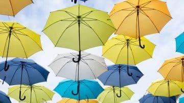 לפני המבול: חמש מטריות שיצילו אתכם בחורף הקרוב