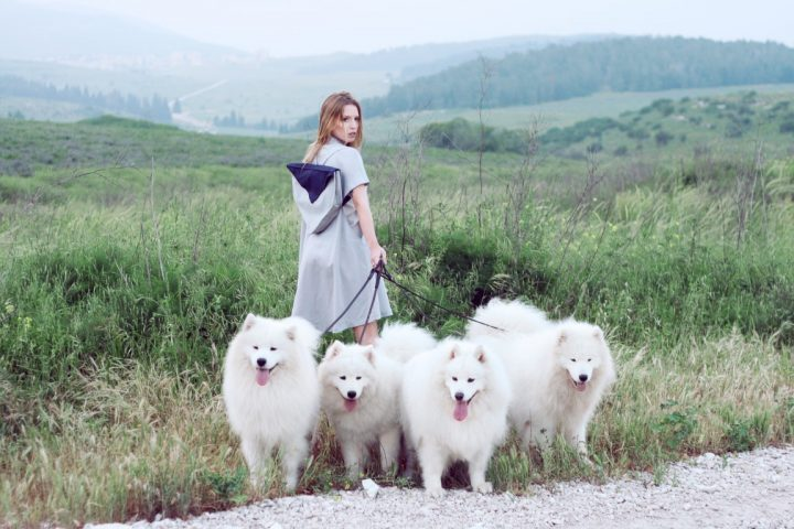 אישה צעירה עם כלבים, דוגווקרית