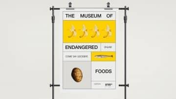 מוזיאון, מזונות, סכנת הכחדה