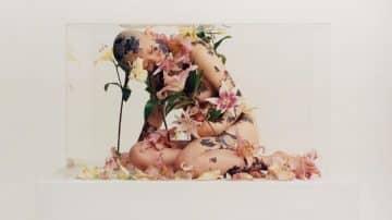 """אל תסתפקו בזר פרחים סטנדרטי: ט""""ו באב שמח ומלבלב"""