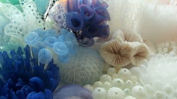 אלמוגים, שונית, בד, mariko kusumoto