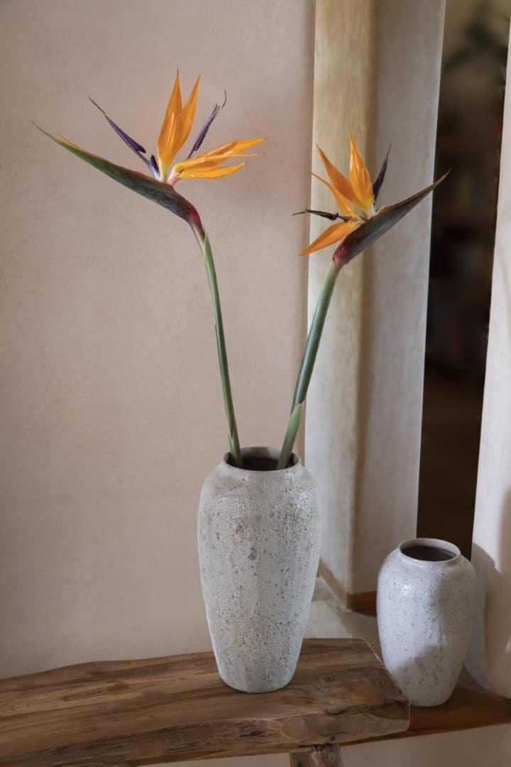 קסטרו הום, פרחים, אגרטלים